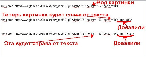 3424885_radikal3 (600x235, 43Kb)