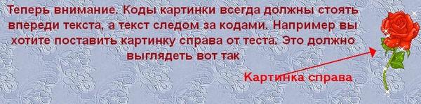 3424885_radikal5 (600x149, 49Kb)