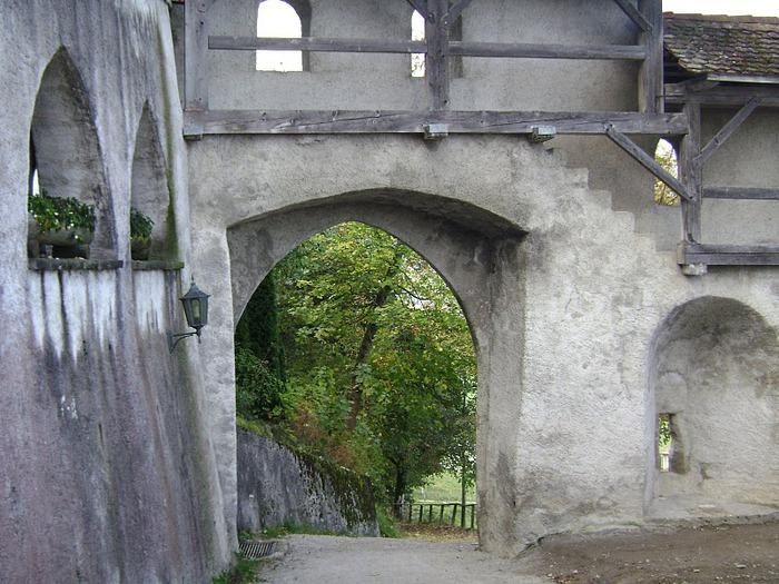 Замок графов де Грюйер (Chateau de Gruyeres) 49560
