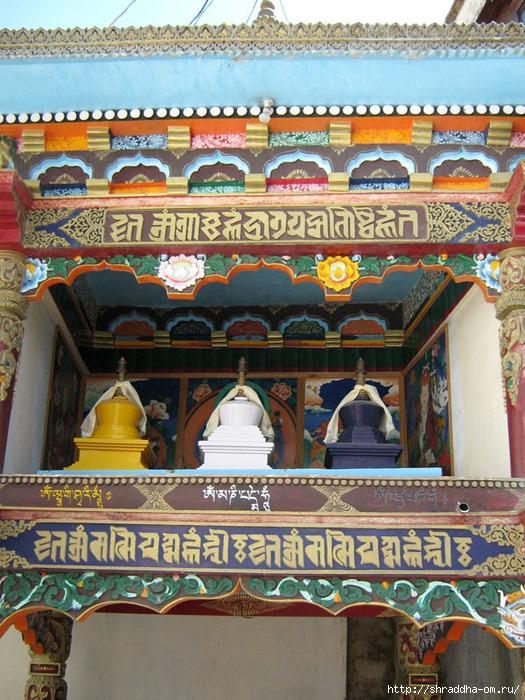 Indiya, Leh, Gompa, Shraddha, 1 (525x700, 341Kb)