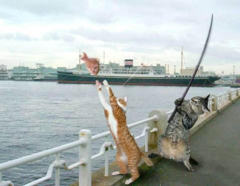 рыбалка (480x372, 41Kb)