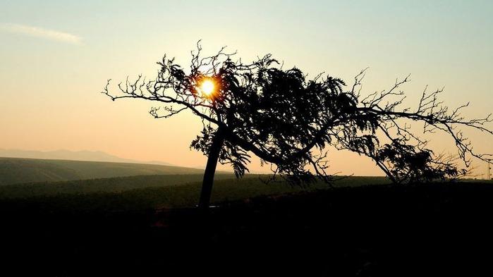 Фотографии солнца - как снимать рассвет или закат 9