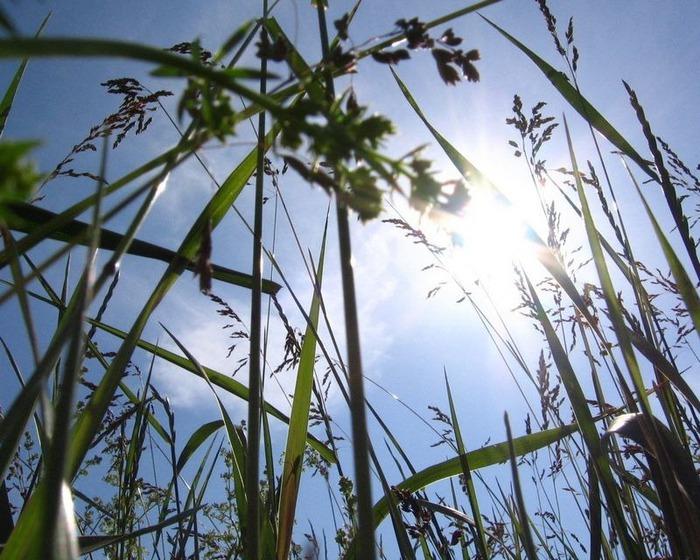 Фотографии солнца - как снимать рассвет или закат 44