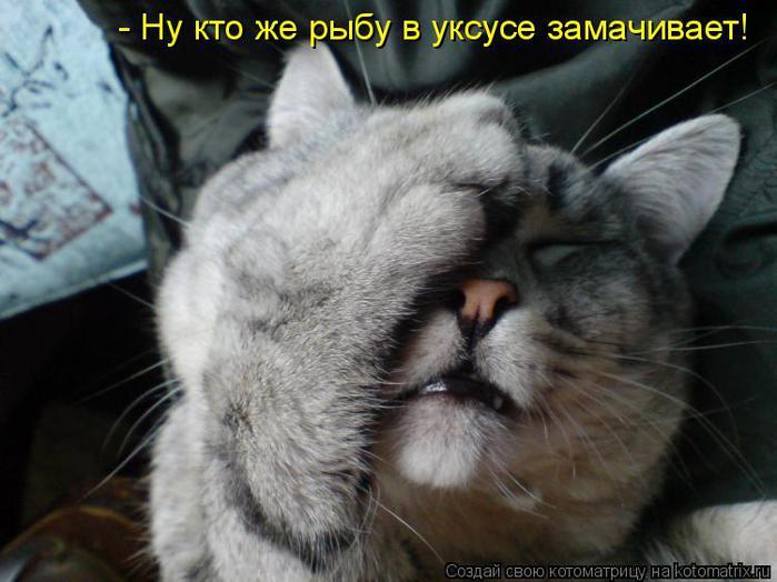 http://img1.liveinternet.ru/images/attach/c/3/77/13/77013279_large_955868.jpg