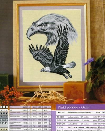 Вышивка крестиком-Орел