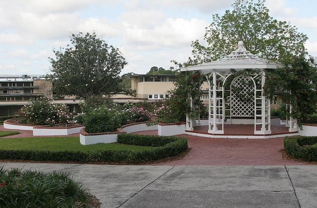 Jenkins Rose Garden  Flickr - Photo Sharing! (650x427, 632Kb)
