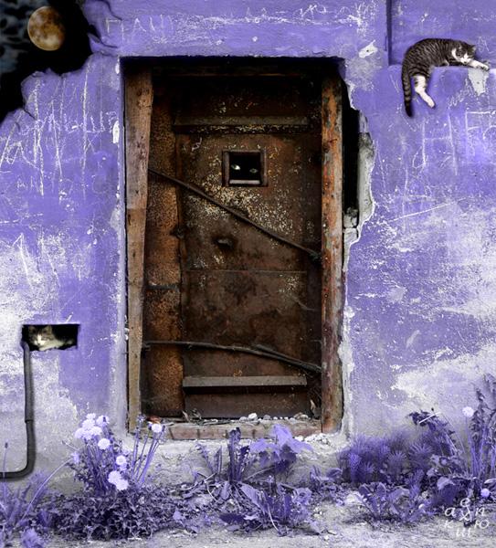 тайная дверь1 (543x600, 213Kb)