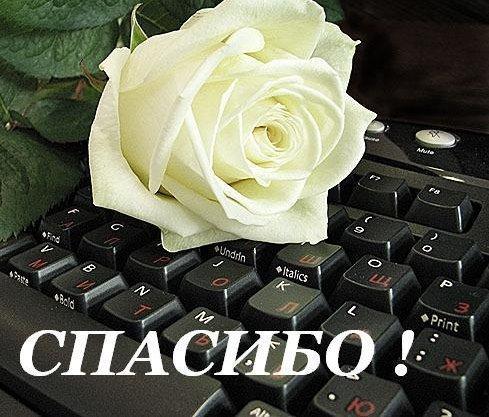 74354572_large_spasibo_klava (489x417, 58Kb)