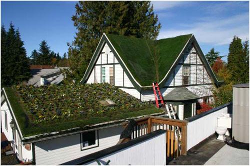 крыши домов картинки.