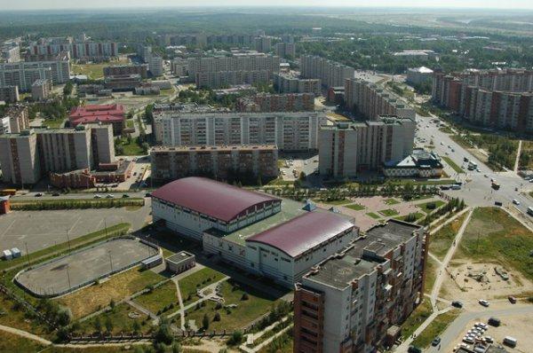 томская область город стрежевой шерсть