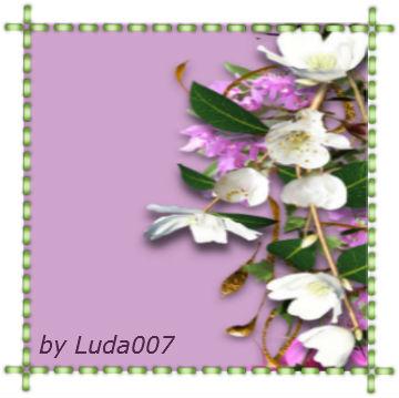 3427527_profal (360x359, 27Kb)