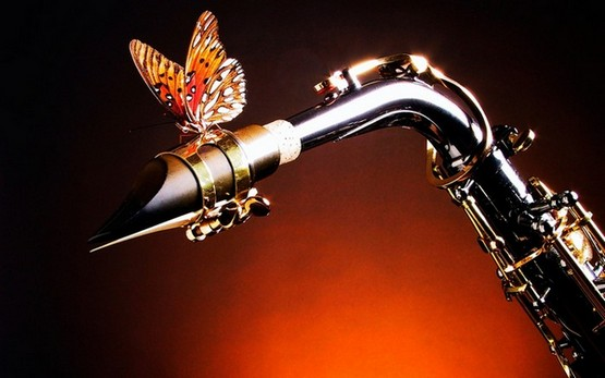 65147866_54605433_48353641_1252085396_Sax_and_Butterfly [1] (555x347, 43Kb)