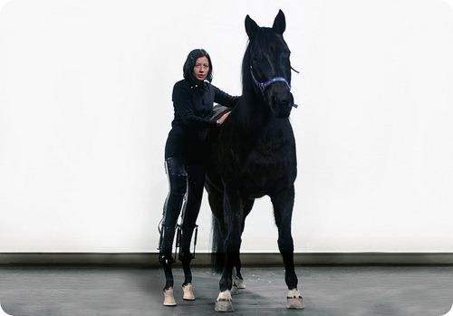 3368205_horse1 (500x349, 30Kb)
