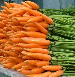 3234145_carrot260 (254x260, 28Kb)