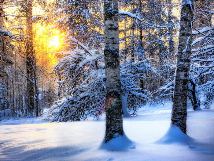 Nature_Seasons_Winter__031337_ (700x525, 201Kb)
