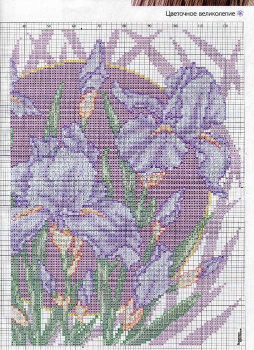 40 (508x700, 273Kb)