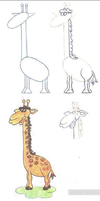 Рисуем животных.  Жираф.