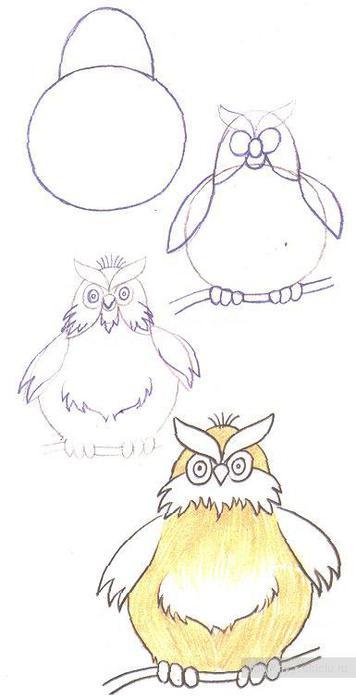 Филин - урок рисования карандашом для начинающих.