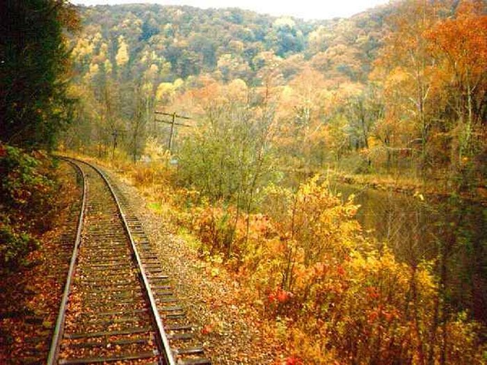autumn-train-maple-leaves-31000 (700x525, 115Kb)