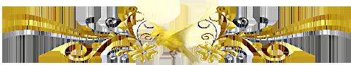 3831326_864be33fa54c (493x92, 61Kb)