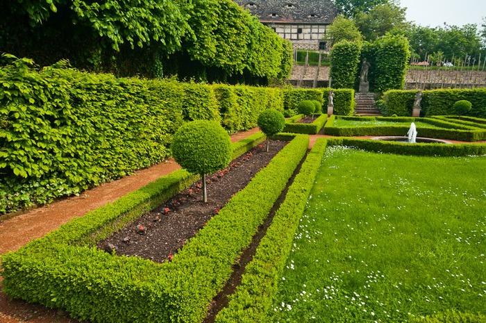 Замки Дорнбург-на-Заале 92764