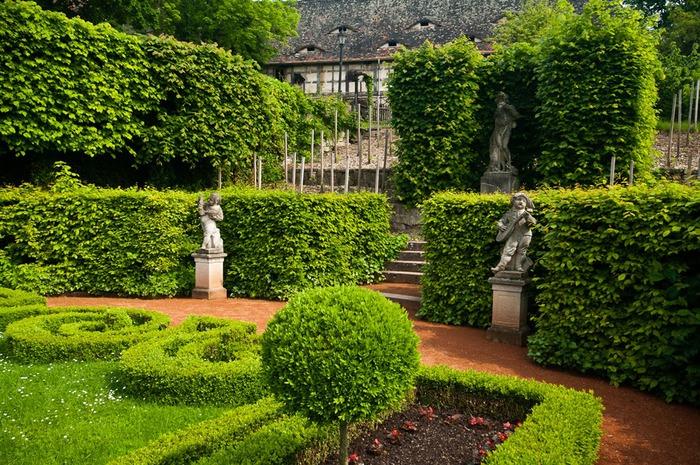 Замки Дорнбург-на-Заале 59644