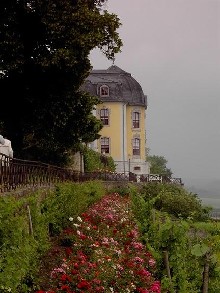 Замки Дорнбург-на-Заале 31624