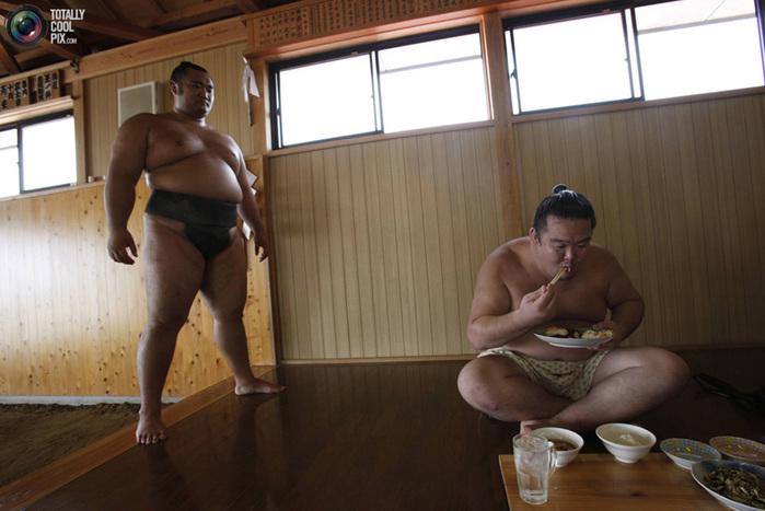 sumo_009 (700x467, 111Kb)