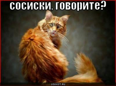 sosiski-govorite_1285604096 (400x298, 29Kb)