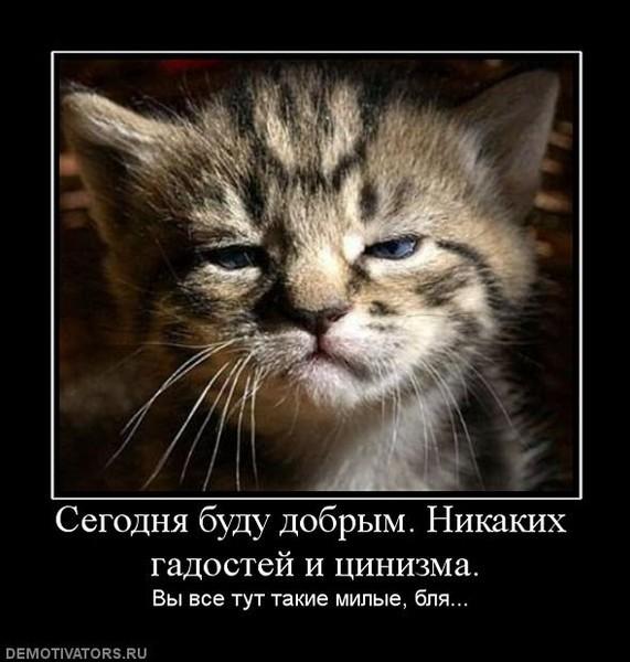 3507063_727671_segodnyabududobryimnikakihgadostejitsinizma (571x600, 70Kb)