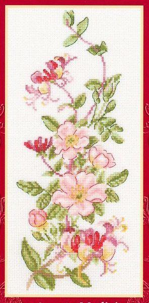 Цветы, растения.  8. larisa.  Летние цветочки.