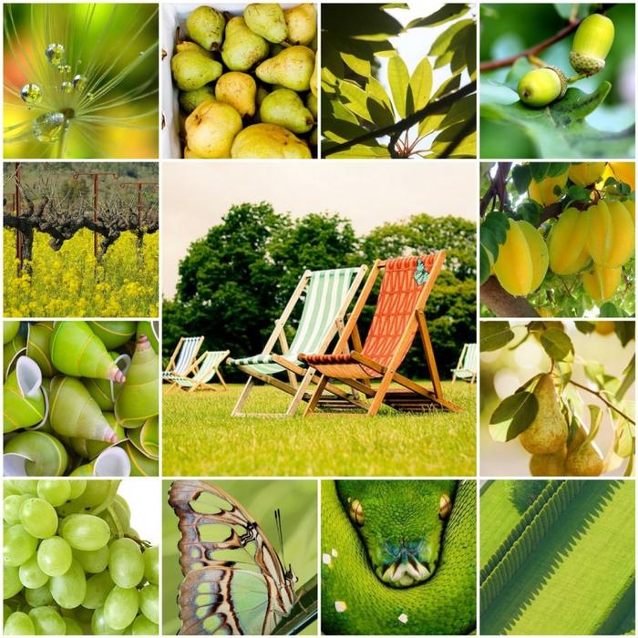 4062630_olive (700x700, 448Kb)