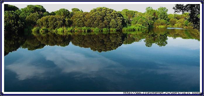 Parque N. de Doyana (Julio Segura Carmona) (700x330, 167Kb)