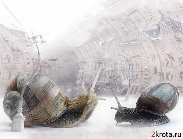 1256415888_surreal_art_32 (640x487, 28Kb)