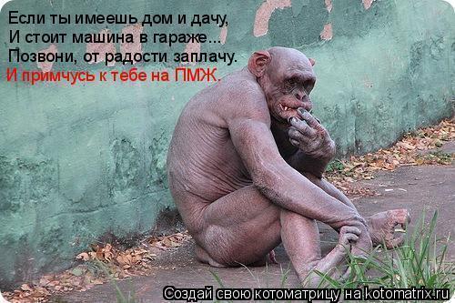 3507063__1_3 (500x333, 46Kb)