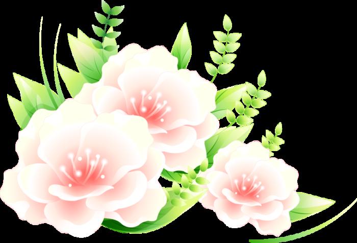 rozovye-cvety (700x476, 209Kb)
