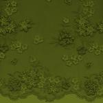 Превью nbk-lace-paper1-4 (512x512, 44Kb)