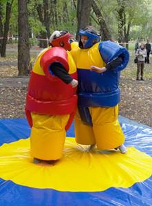 1-sumo (221x300, 100Kb)