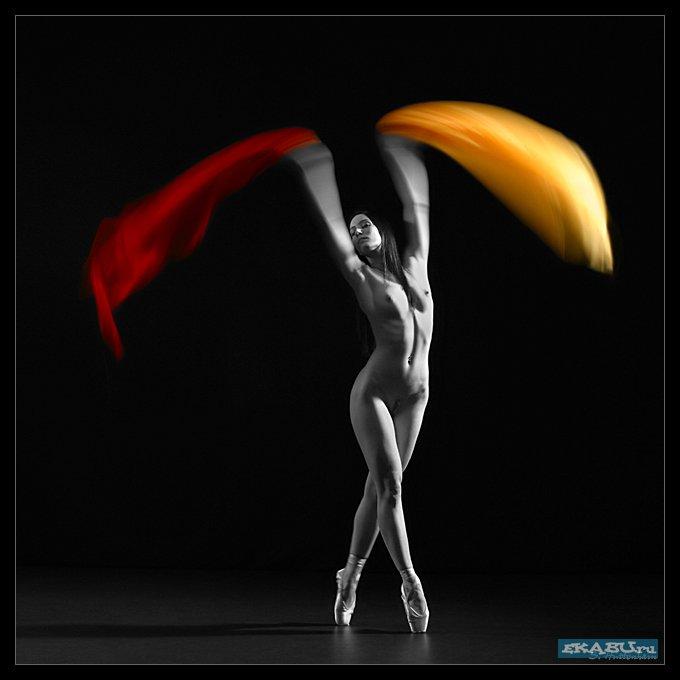 1233748028_sascha-huettenhain_12-wings-of-dance-2 (680x680, 33Kb)