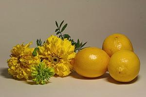 лимон (300x200, 17Kb)