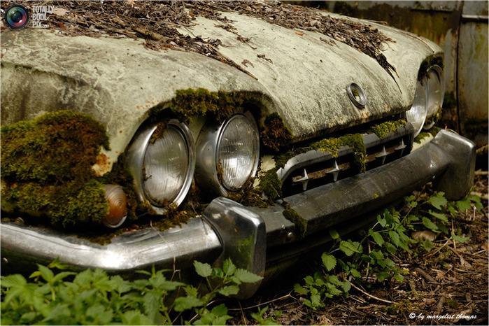 cars_022 (700x466, 142Kb)
