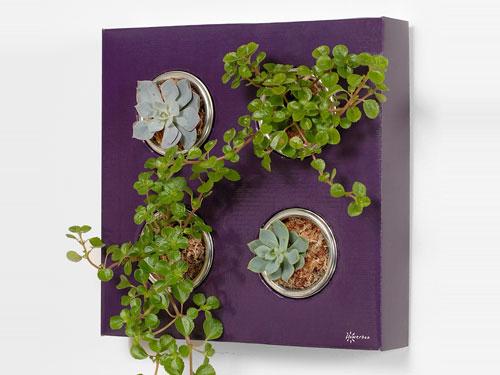 свой цитатник или сообщество!  Красивые композиции из комнатных растений.  Прочитать целикомВ.