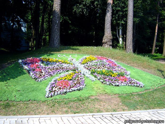 park-zveti-babochka[1] (700x525, 251Kb)