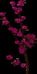 Превью Missy_sp_blossom1 (351x700, 138Kb)