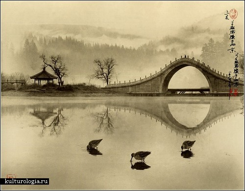 don-hong-oai2 (500x390, 50Kb)