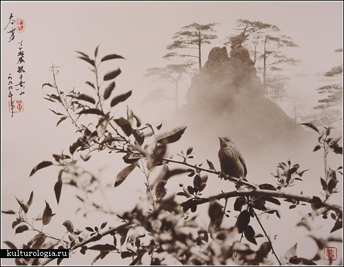don-hong-oai9 (500x389, 56Kb)