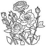 Превью rose (522x522, 137Kb)