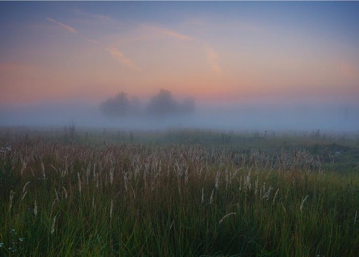 Туманы Зауральской равнины (700x501, 87Kb)