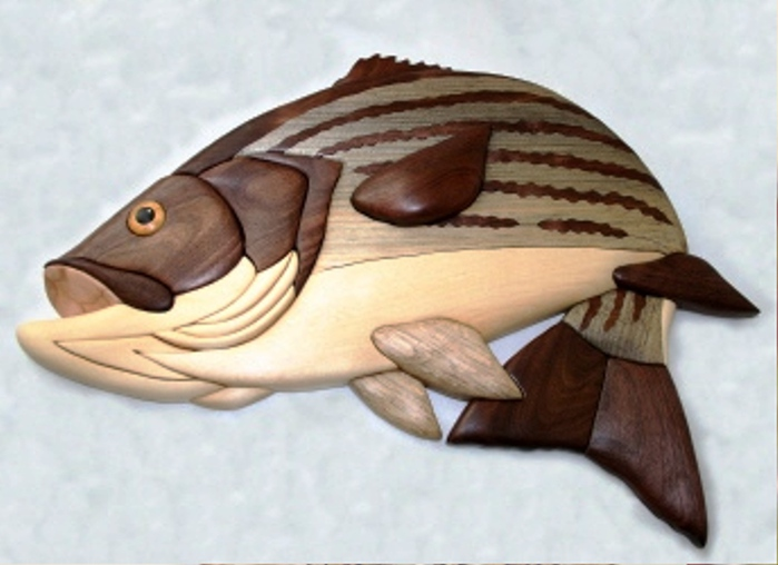 webStripedBass (700x508, 108Kb)