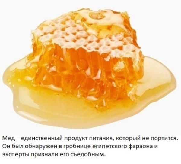 выбор меда